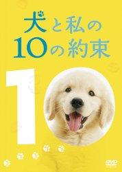 映画:犬と私の10の約束