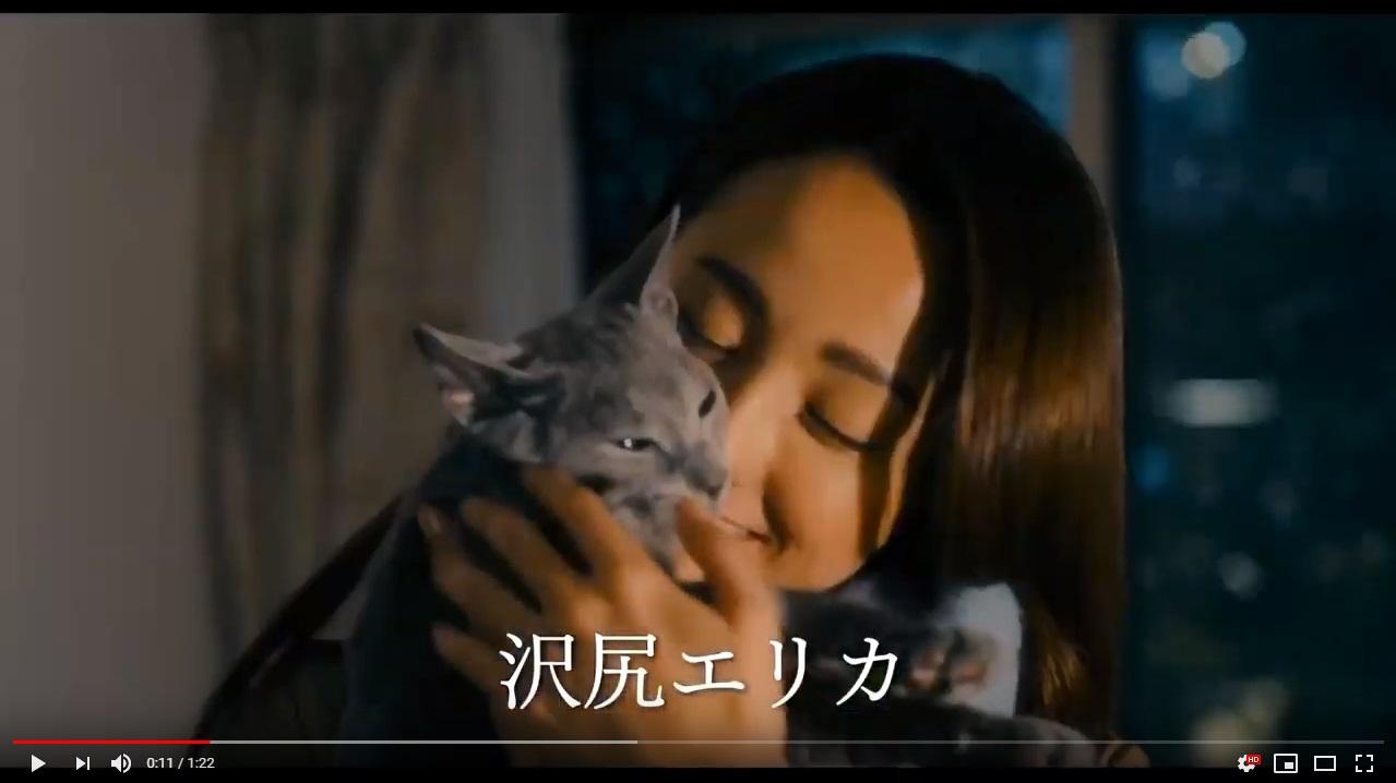 猫は抱くもののシーン1