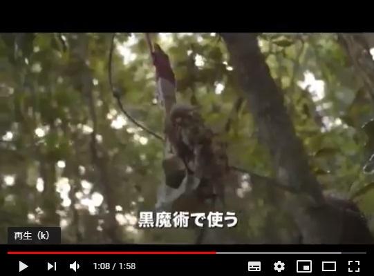ジャングル不滅のシーン3