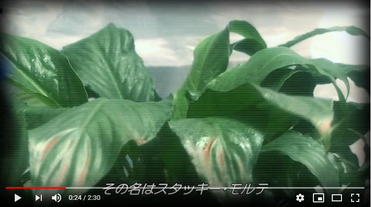 ゾネイダー地球感染計画のシーン2