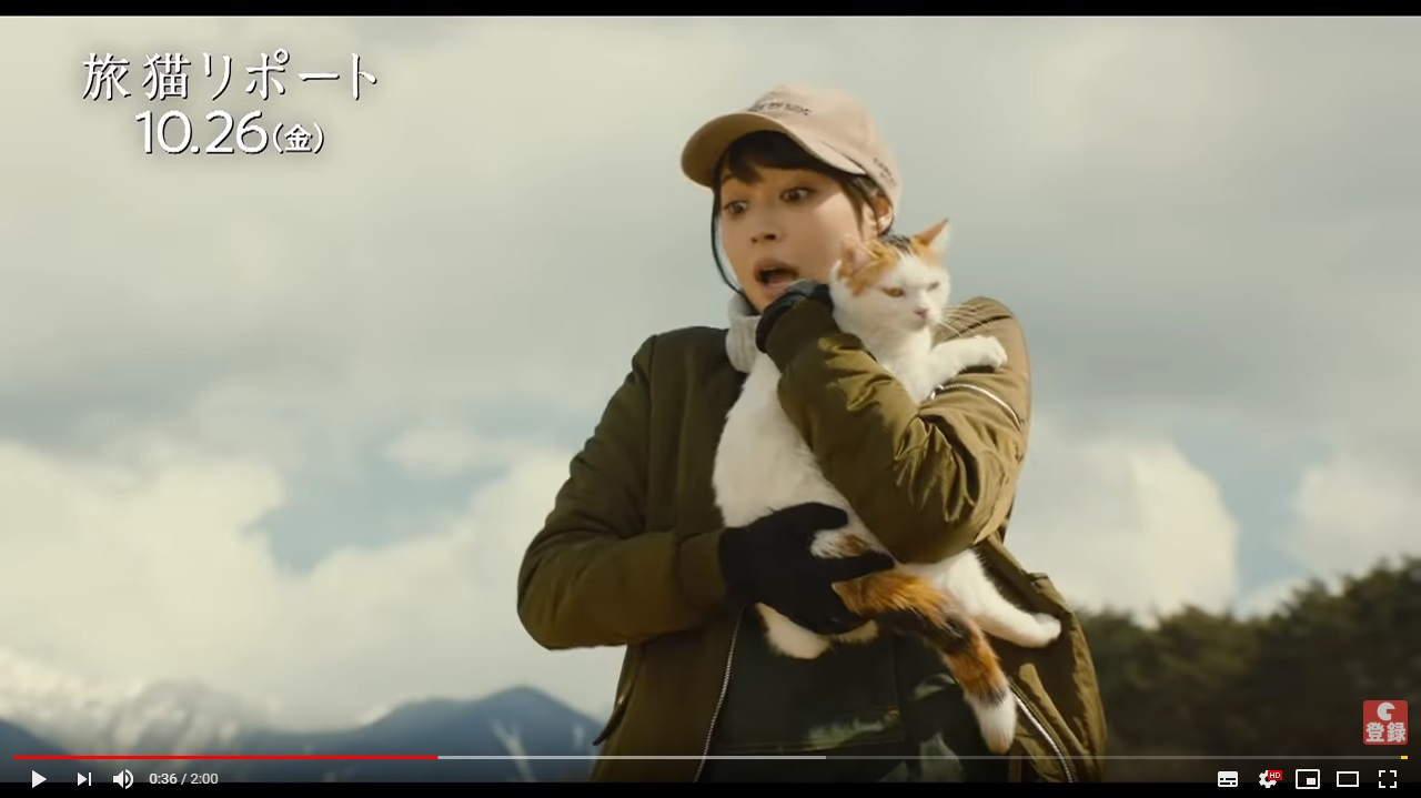 旅猫リポートのシーン2