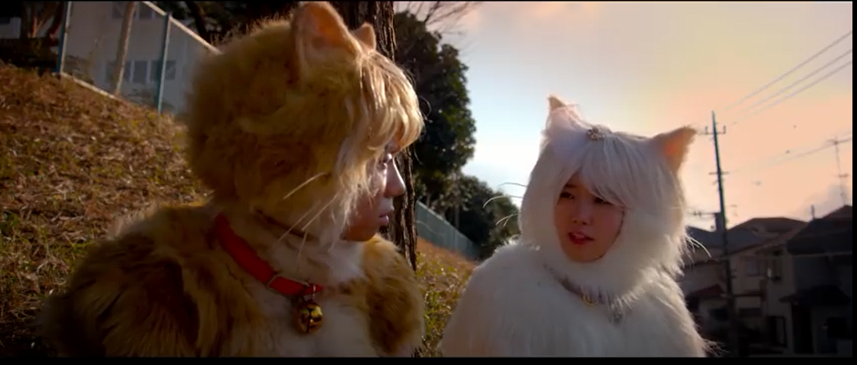 トラさん~僕が猫になったワケ~のシーン3