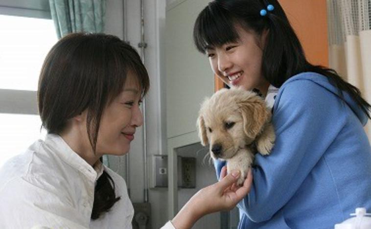 犬と私の10の約束のシーン1